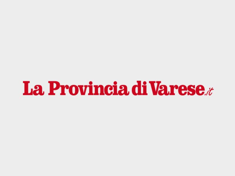 Provincia varese business